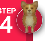 Audition-NewLoveMAR18-Step4