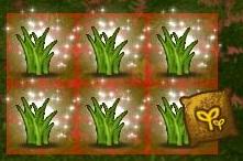 การใช้งาน secret garden [ตอนที่ 1 ปลูกพืช]
