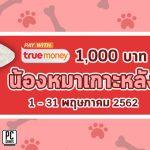 pro-true1000-1may19