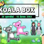 Koala-Box (1)