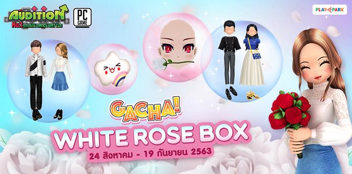 [AUDITION14th] Gacha : White Rose Box ลุ้นรับ หน้ากุหลาบขาวสุดน่ารัก!! [Sold Out]